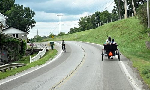 Be careful of horse-drawn buggies and children!
