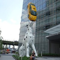 Dalmatian, Spot, Juggling Real New York Yellow Cab