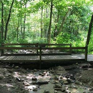 Bridge along many of the walking paths