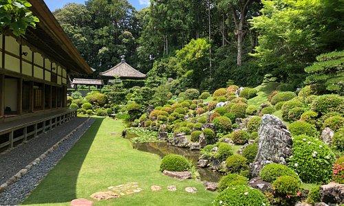 浜真敦帰宅にある龍潭寺。それほと大きなお寺ではありませんが、庭園がとてもきれいでした。静岡にいながら京都を感じられる素敵な空間でした。