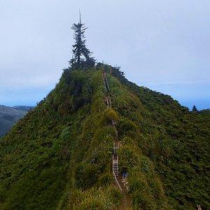 Top of Diana's Peak