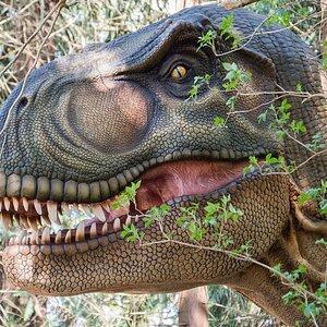Vores Dinosaurskov byder på et møde med enestående dinoer - der både vækker begejstring og gys!