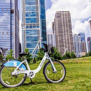 Chicago's Bike Share System: Divvy