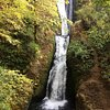 Things To Do in Exclusive Mount Hood & Columbia River Gorge Air Tour, Restaurants in Exclusive Mount Hood & Columbia River Gorge Air Tour