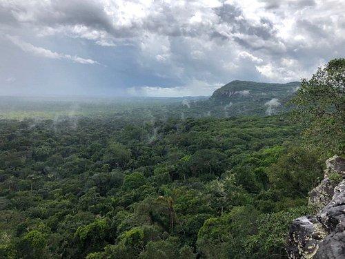 Llueve Sobre la Selva