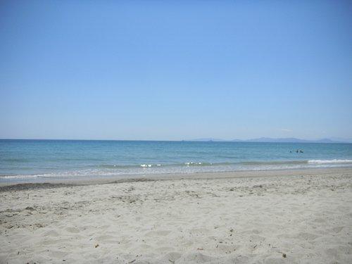 La spiaggia è molto bella e soprattutto pulita, perché chi ama gli animali rispetta la natura!