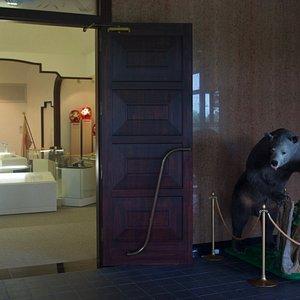 玄関を入るとヒグマの剥製が