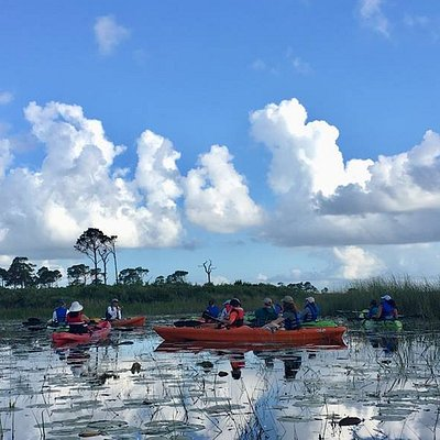 The Friends of Savannas offers weekly Guided Kayaking Programs.