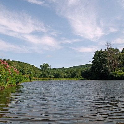 The northern end of Littleville Lake.