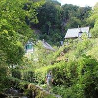 Erlebnisweg Tal der Wilden Endert | Cochem-Ulmen, Deutschland