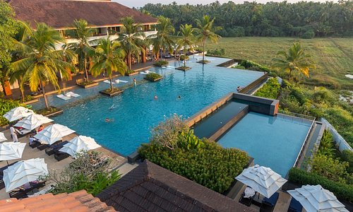 Hotel, main pool and paddy fields