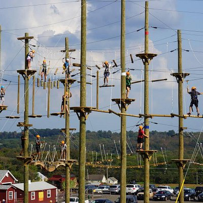 The Aerial Adventure Park has 3 different levels so everyone can find their own thrill level!