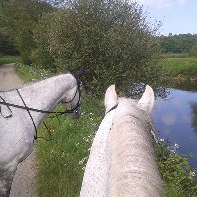 Chemin de Haylage horse ride