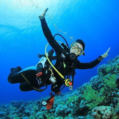 Erleben Sie mit uns die atemberaubende Unterwasserwelt der Costa del Sol