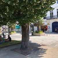 Place Colbert , le lieu mythique du tournage des « demoiselles de Rochefort», le film de Jacqu