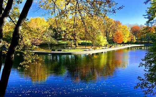 un des étangs du Parc Lafontaine