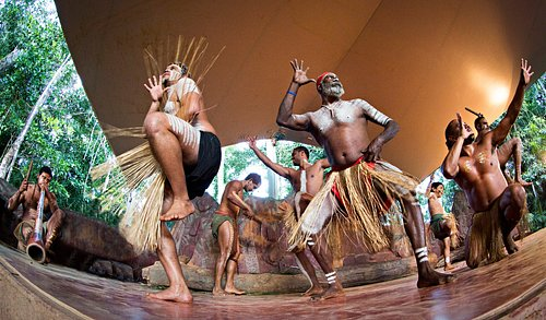 Learn more about Indigenous Culture and watch our interactive Pamagirri Dance Show