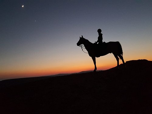 Riding by moonlight by at Ramon Crater