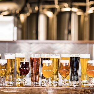 16 taps at Venn Brewing Company - and a short light rail ride from the MSP Airport.