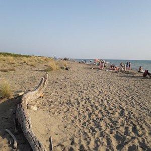 Inizio spiaggia delle capanne