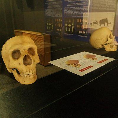 Centro de Interpretación del Paleolítico