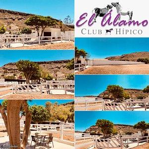 """Reithof """"El Álamo - Club Hípico"""""""