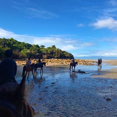 Riding out to the waters edge, Abel Tasman National Park on our left