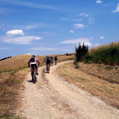 Tour in bicletta sul Monteserra - Pisa