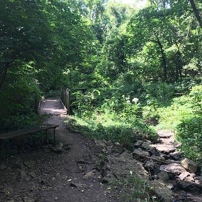 trail and creek