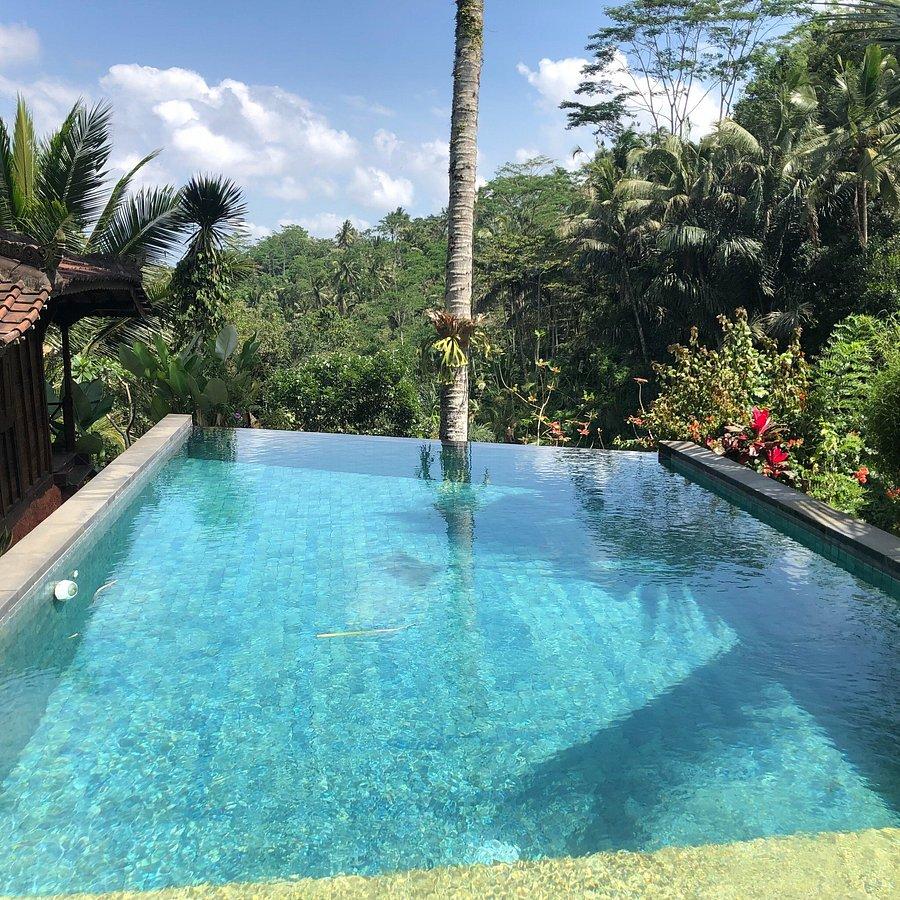 Dd Ubud Jungle Villa Prices Reviews Bali Tegalalang Tripadvisor