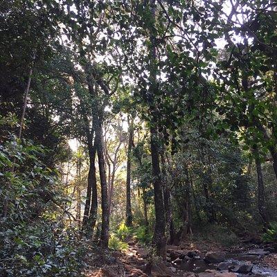 Phiphidi Waterfall