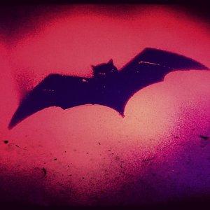 Zapoluj na wampiry