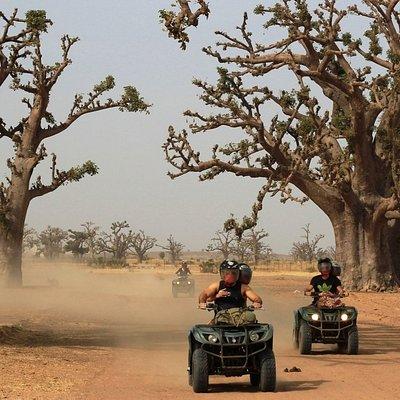 Raid en Quads à travers la Forêt de Baobabs...exceptionnel !!