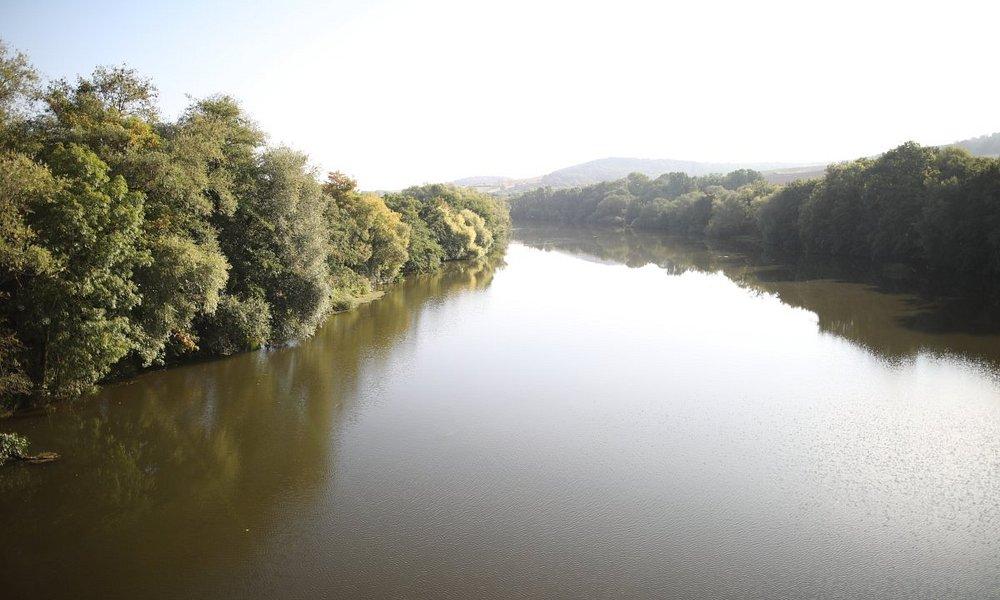 Vue de la Moselle