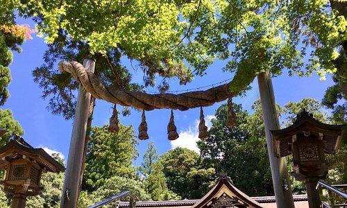 大神神社は比較的願いが叶いやすい神社と言われています。