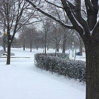 Early Winter in Westmount Park