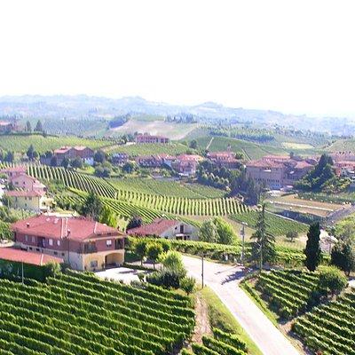 Cascina Albano Winery and Wineyrds