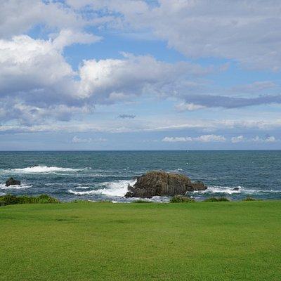 緑と岩の景色