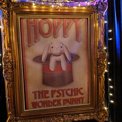 Hoppy The Psychic Wonder Bunny