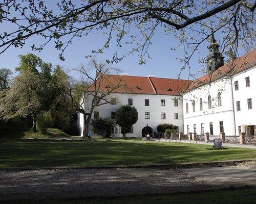 Mendel Museum