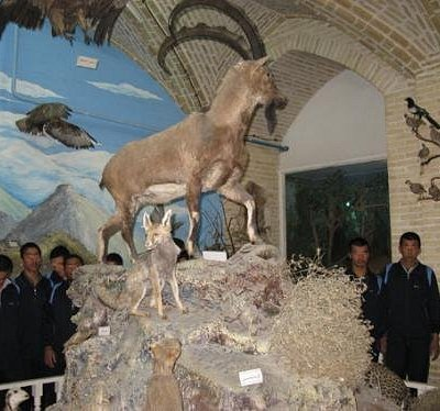 Natural Science Museum of Yazd
