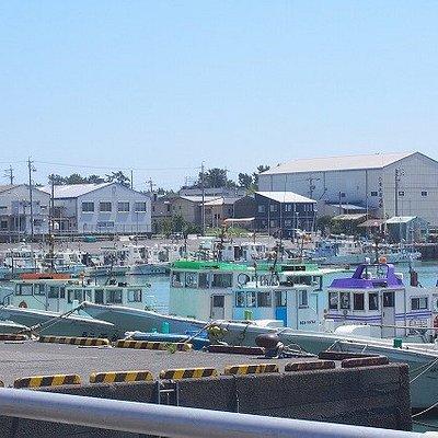 漁港の眺め