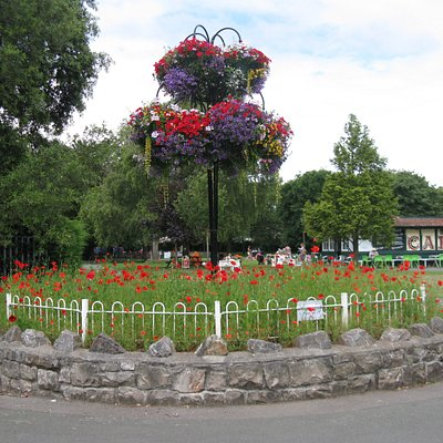 Clarence Park flower bed, Olivers Cafe in the background.