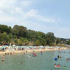 Dsi Plajı