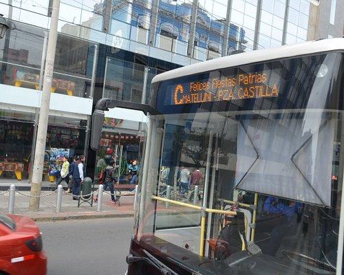 バスの車両
