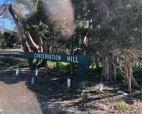 Conservation Hill Reserve