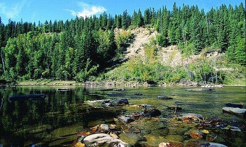 Pembina River Provincial Park.