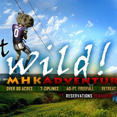 Willie the Wildcat getting Wild on our ziplines!