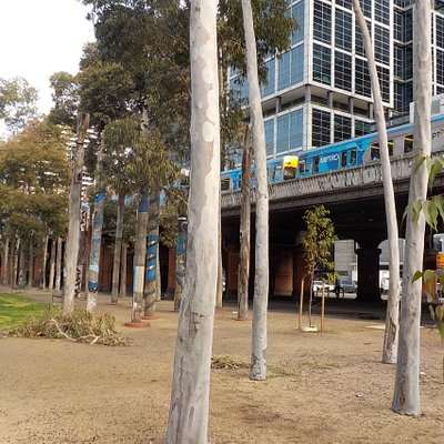 Trees and one of the railway viaducts