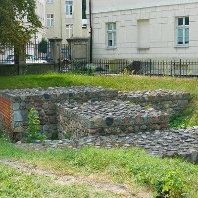 Rezerwat Archeologiczny Zamku Kazimierzowskiego